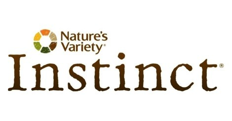 Instinct Dog Food Review
