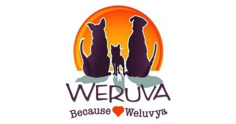 Weruva Dog Food Review